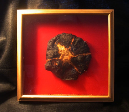 Burnt Tortilla Behind Glass
